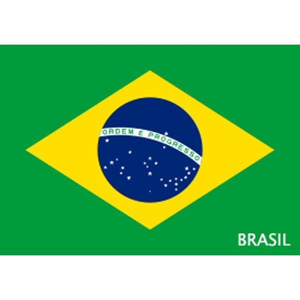 Bandeiras | Bandeirolas - novidades - Bandeira do Brasil